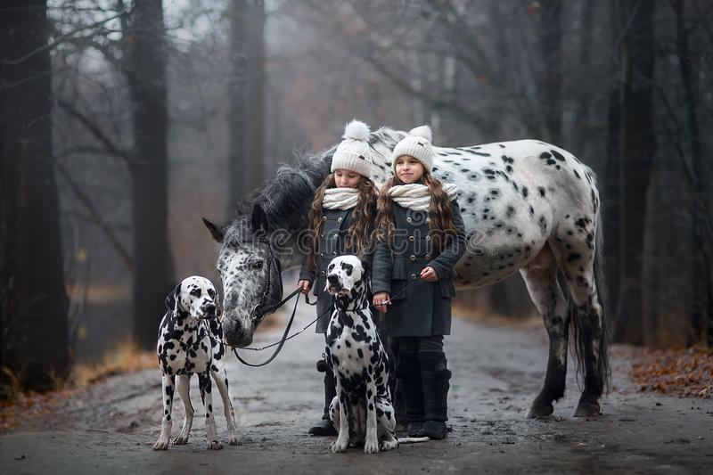 Twins girls portrait with Appaloosa horse and Dalmatian dogs stock photography