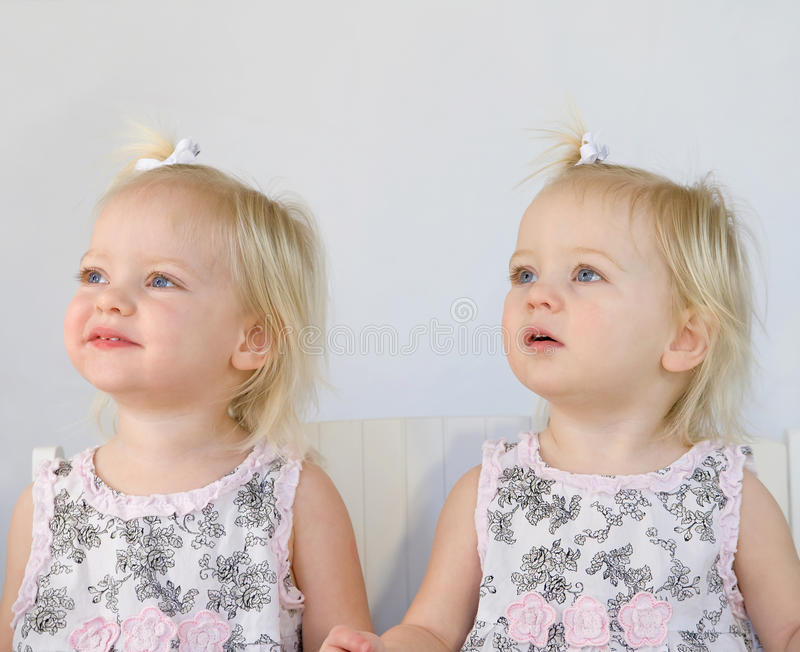 Twins Having Fun royalty free stock images