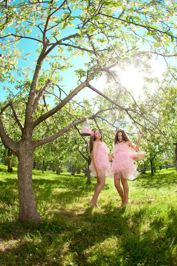 Twins In Pink Doll Style Royalty Free Stock Images