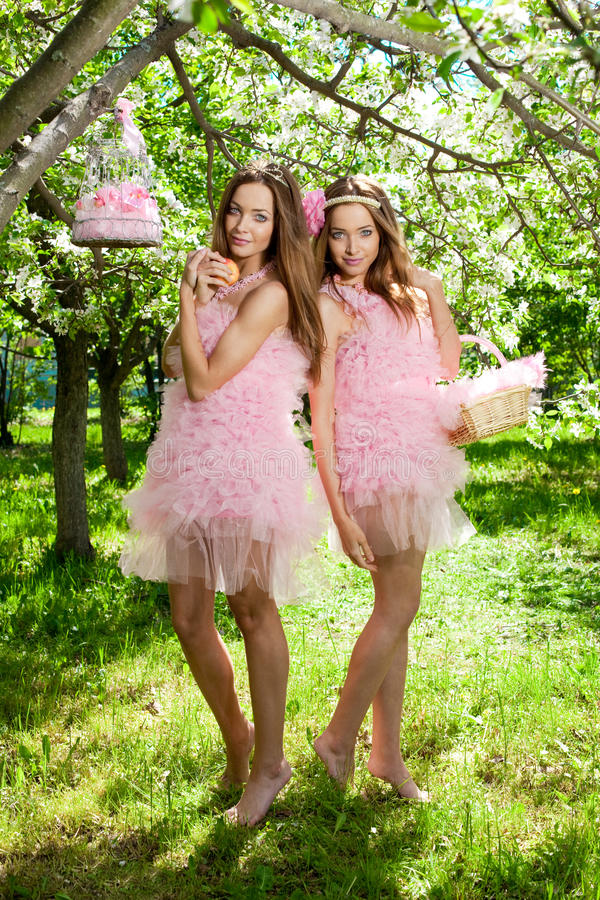 Twins in pink doll style stock image