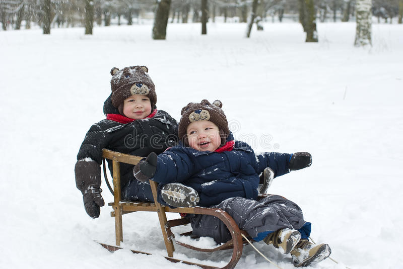 Twins in the sled. Twin boys in the sled in the winter forest royalty free stock photo