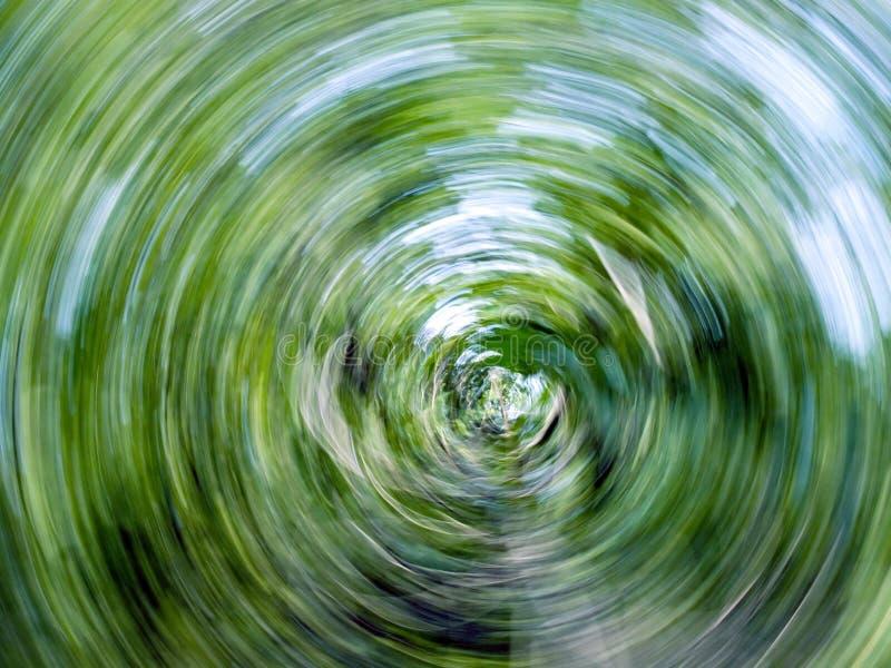 Twirl abstrato da natureza. imagem de stock