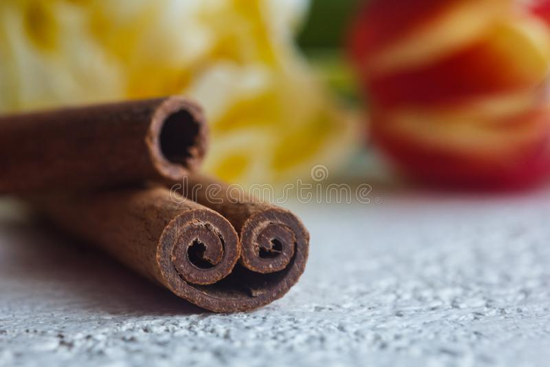 Twisted cinnamon sticks close-up on a white table background. seasoning and flowers close up. copy space. spice stock image