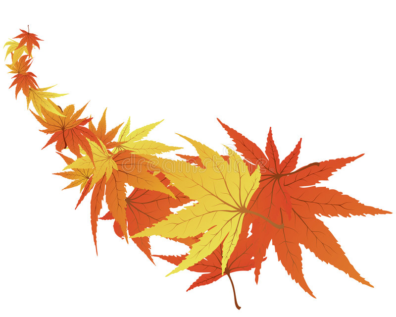 Download Twisted leaves stock vector. Image of backdrops, abstracts - 6390168