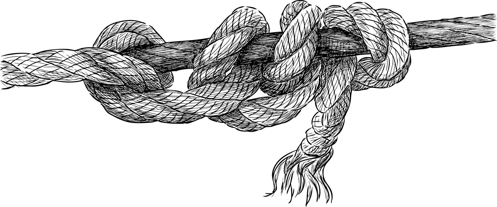 Twisted rope vector illustration
