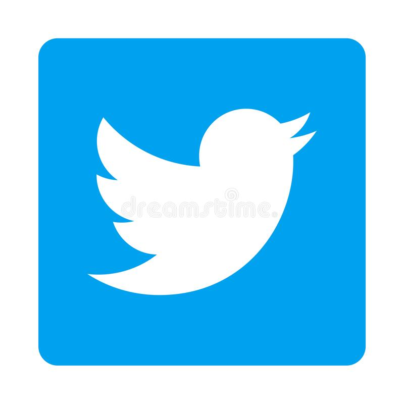 Twitter icon. Simple vector filled flat twitter icon isolated on white background. social media icon stock illustration