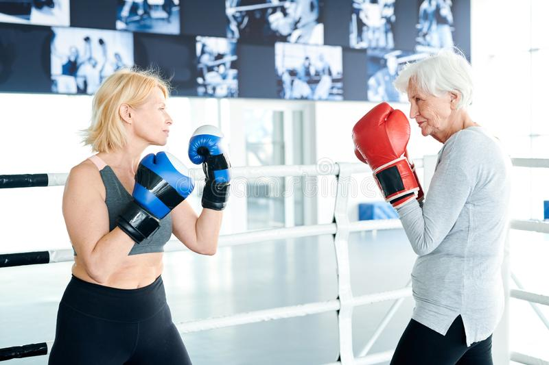 Competitors in boxing gloves. Two active female boxers in gloves standing opposite one another while fighting on boxing ring stock photography