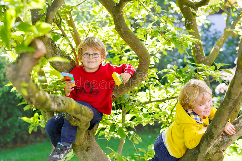 Two active little kid boys enjoying climbing on tree royalty free stock images