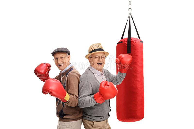 Two active senior men with boxing gloves and a punching bag behind them royalty free stock photo