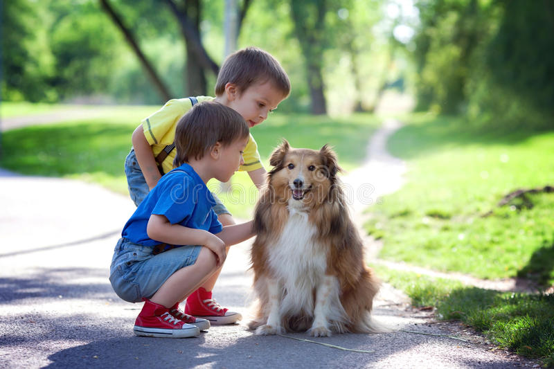 Two adorable boys, brothers, caressing cute dog in the park. Summertime, enjoying the day stock image