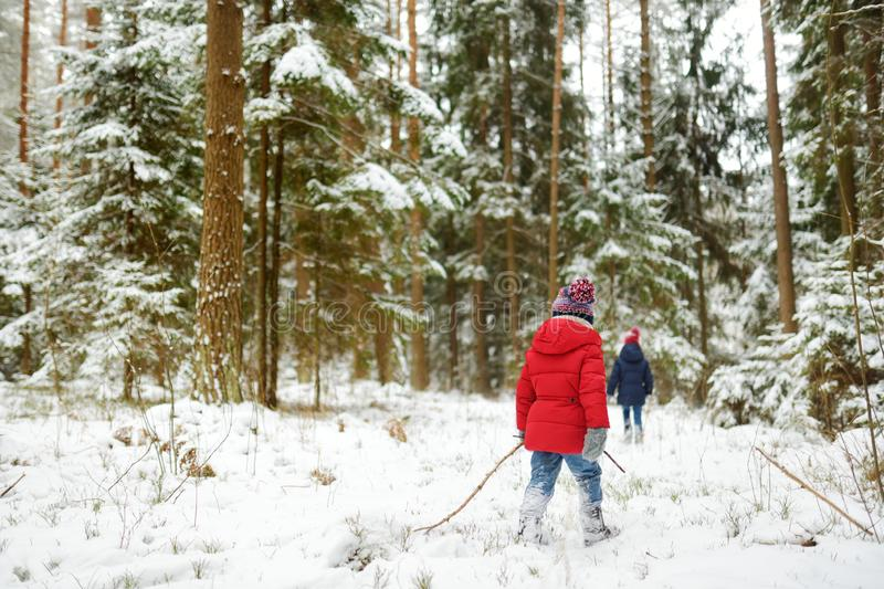 Two adorable little girls having fun together in beautiful winter forest. Beautiful sisters playing in a snow royalty free stock image