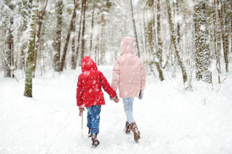 Two adorable little girls having fun together in beautiful winter forest. Beautiful sisters playing in a snow stock images