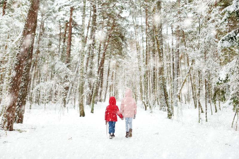 Two adorable little girls having fun together in beautiful winter forest. Beautiful sisters playing in a snow stock photography