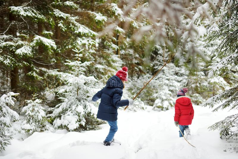 Two adorable little girls having fun together in beautiful winter forest. Beautiful sisters playing in a snow stock photos