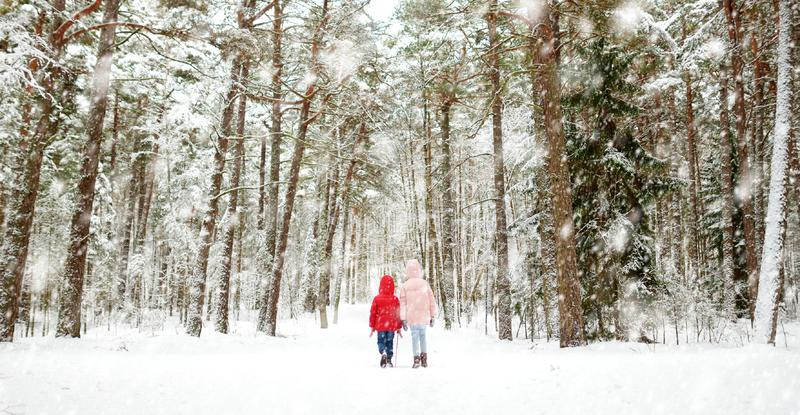 Two adorable little girls having fun together in beautiful winter forest. Beautiful sisters playing in a snow royalty free stock photo