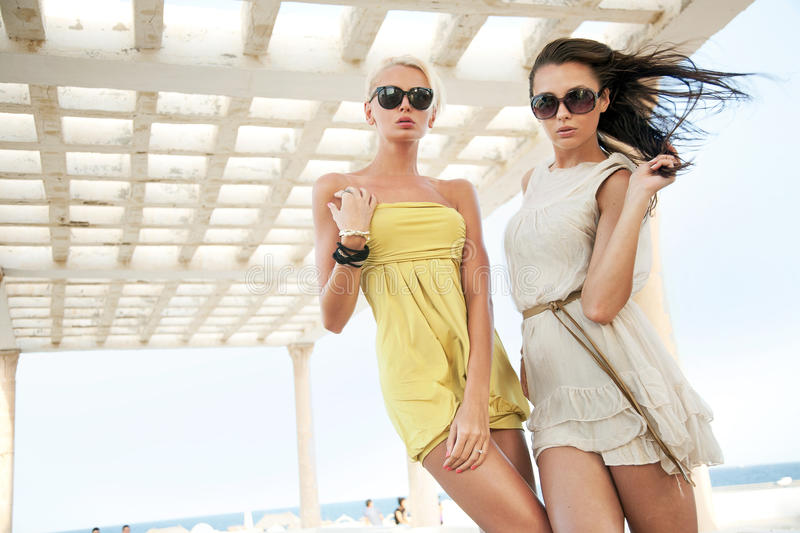Download Two adorable women stock photo. Image of glass, protection - 22819222