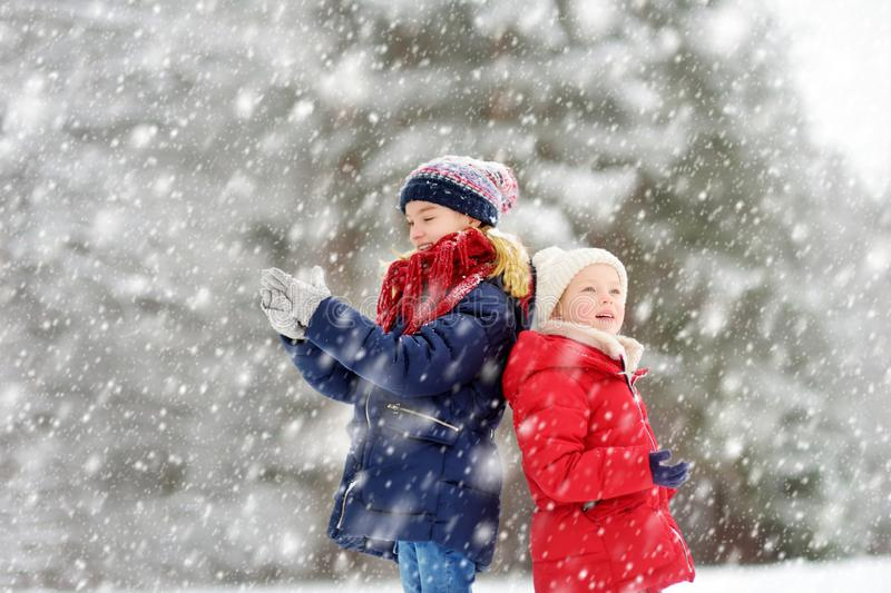 Two adorable young girls having fun together in beautiful winter park. Cute sisters playing in a snow royalty free stock photos