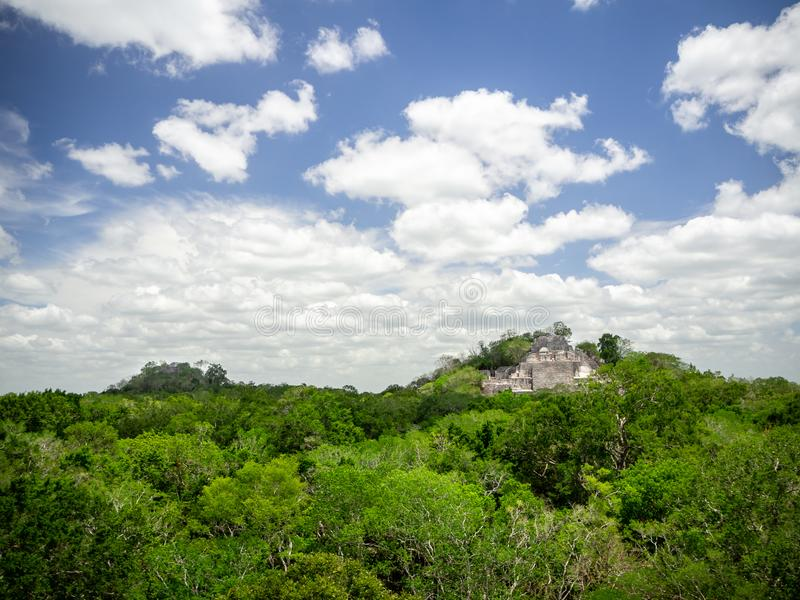 Two ancient Mayan stone structures rising out of the jungle canopy at Calakmul, Mexico royalty free stock photo