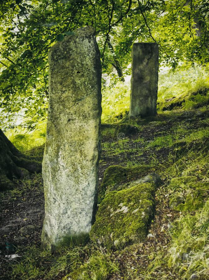 Two ancient standing stones underneath overhanging branches in woodland. Two ancient standing stones underneath overhanging branches in green woodland with mossy royalty free stock photo