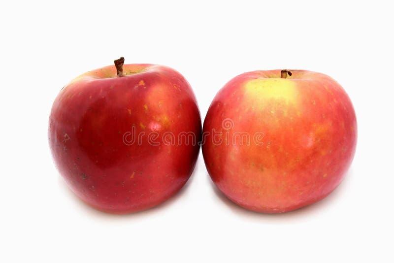 Download Two_apples stock image. Image of diet, fresh, juice, flavor - 11187353