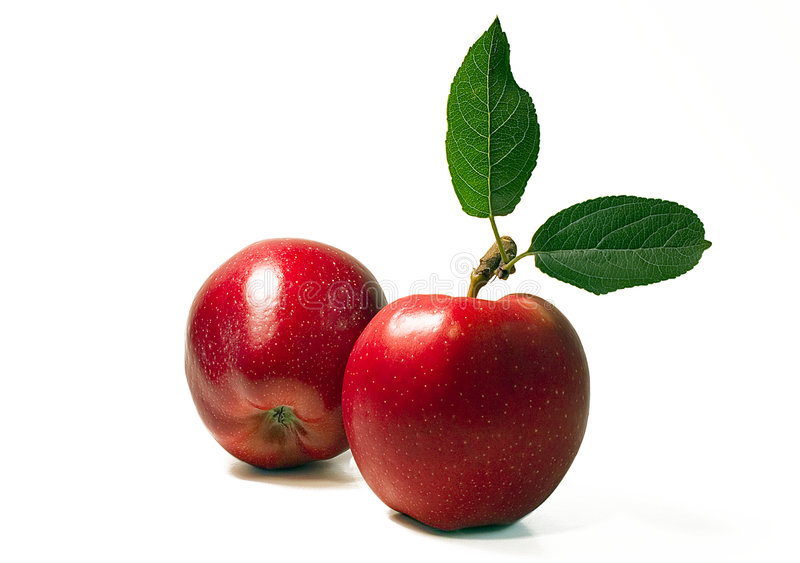 Two apples. Two fresh red apples with leaves