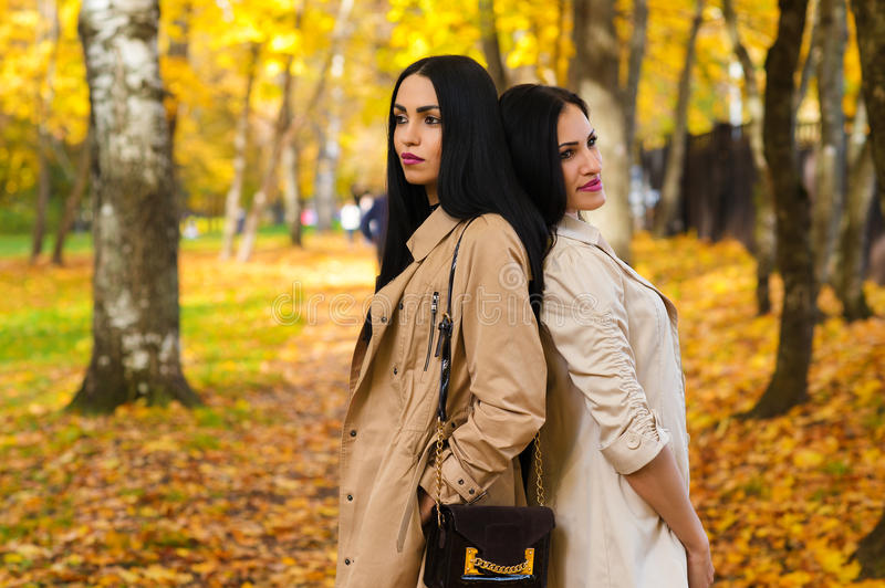 Two attractive girlfriends in autumn park stock photos