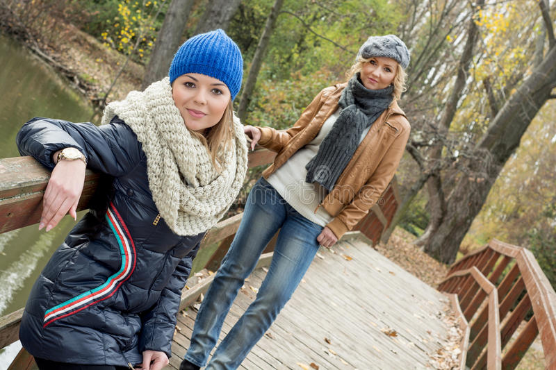 Two attractive young women posing on a wooden bridge stock image