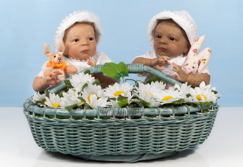 Two babies in the basket. Two cute babies with bunny in flower basket stock images