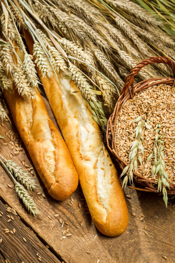 Two baguettes and a basket full of grain with ears royalty free stock images