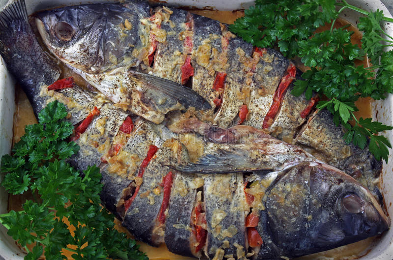 Two baked fish stock photography