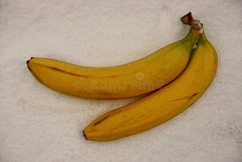 Two bananas on a gray sacking royalty free stock images