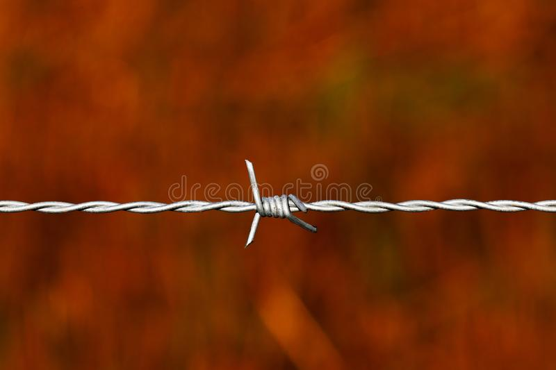 Tight barbed wire over a red background. Taut, twisted, galvanised steel wire bearing strong sharpened barbs to control access and exit and is a sign of power royalty free stock image