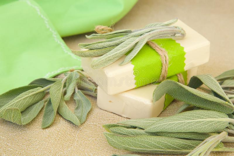 Two bars of soap with essential oil. Two bars of soap with sage essential oil. Fresh sage leaves in the background stock photo
