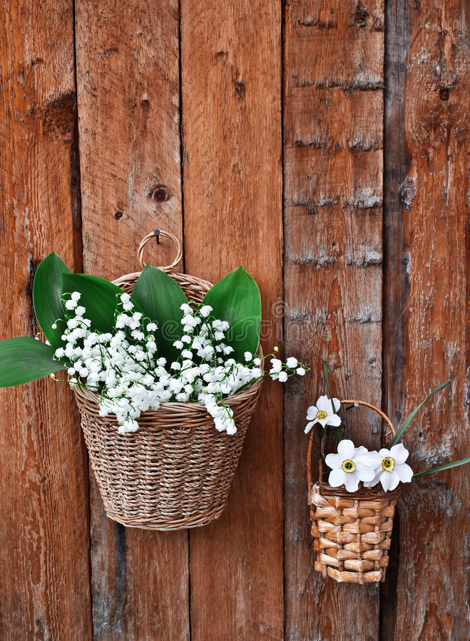 Two baskets of lilies and daffodils. On a wooden background stock images