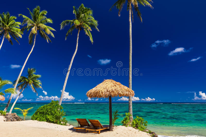 Two beach chair under umbrella with palm trees, Samoa. Islands stock image