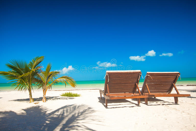 Two beach loungers on the exotic resort on white. Sand beach. See my other works in portfolio royalty free stock photo