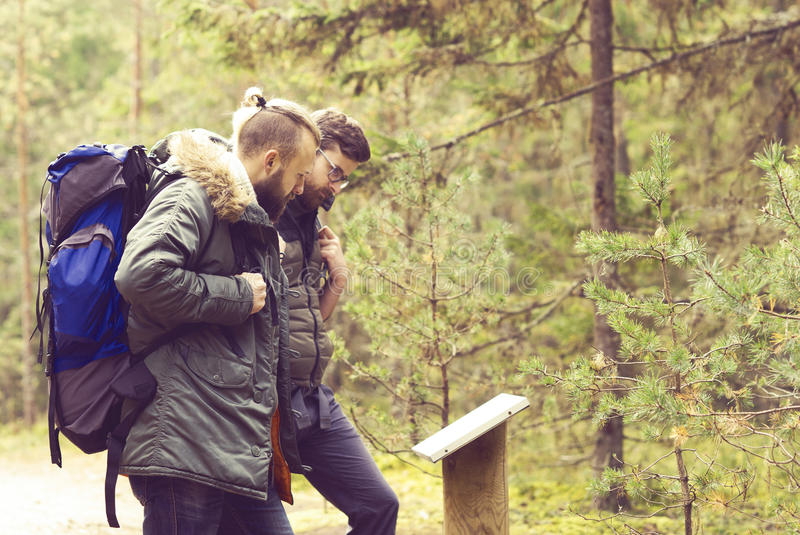 Two handsome, bearded men hiking in autumn forest. Camp, adventure, traveling and trip concept. stock photo