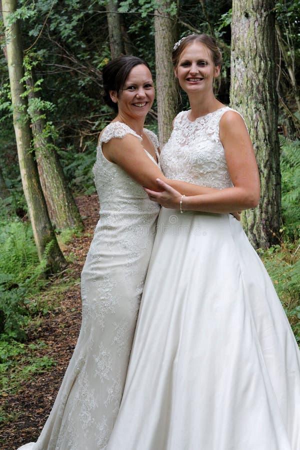 Same sex rural wedding royalty free stock photos