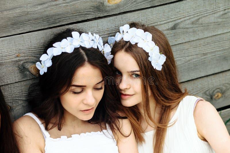 Two beautiful girl royalty free stock photos