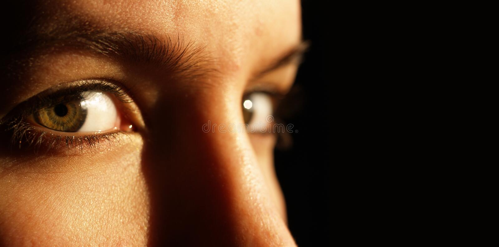 Two Beautiful Green Eyes Stock Photography