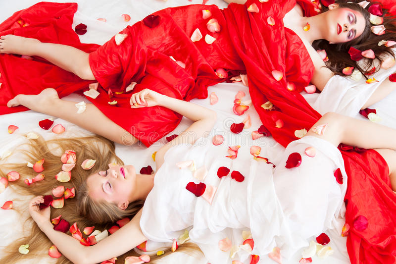 Two beautiful long-haired girls are relaxing in rose petals. Studio shot royalty free stock image
