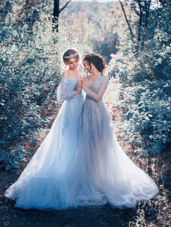Two beautiful princess stock image. Image of gray, brunette - 102280997