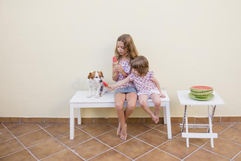 Two beautiful sister kids eating a watermelon ice cream with their cute dog. Family love and lifestyle outdoors stock photo