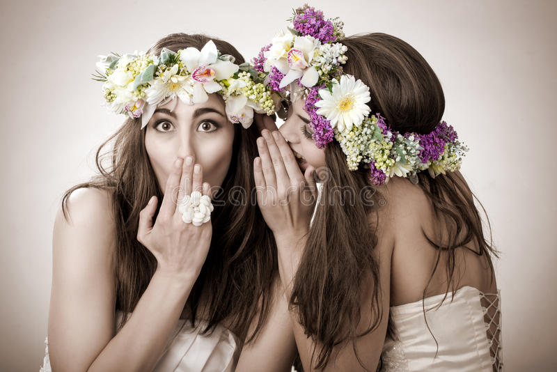 Two beautiful spring fairy , funny, friendship symbol.  stock photo