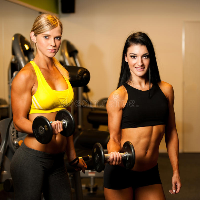 Fit Ladies Who Work Out And Have: Two Beautiful Women Working Out With Dumbbells In Fitness