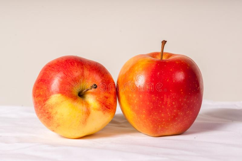 Beautiful Red Apples. Two beautifully colored red apples are portrayed on a white backdrop royalty free stock image