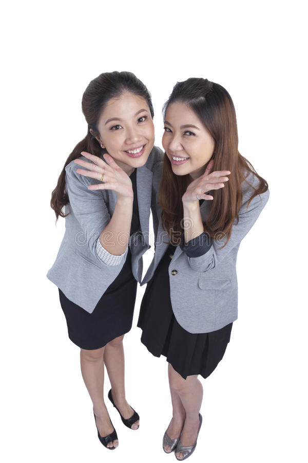 Two beauty businesswomen royalty free stock images
