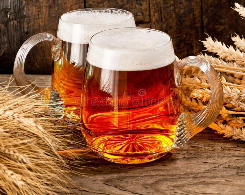 Two beer glasses with wheat and barley stock photos