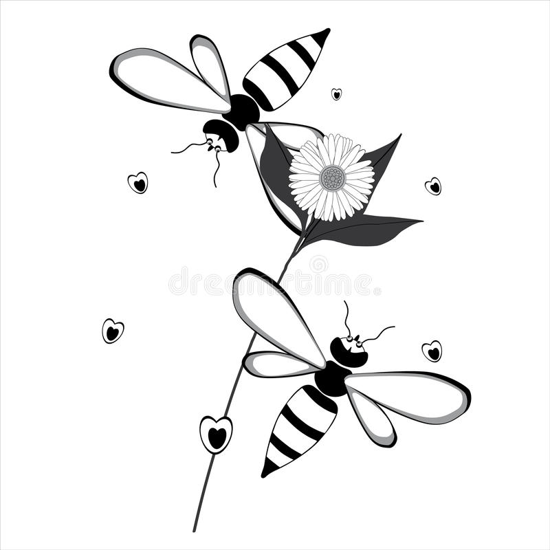 Two bees flying around a flower. Two bees flying around in a daisy flower, isolated on white background royalty free illustration