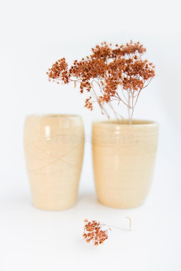 Two beige vases with dried plants on a white background. minimalism style. interior decoration. royalty free stock photos